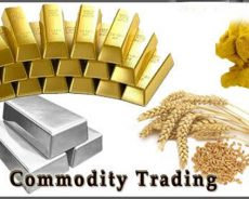 Commodity Market – A Worldwide Investment Tier
